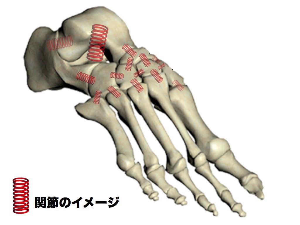 足根骨関節イメージ.001